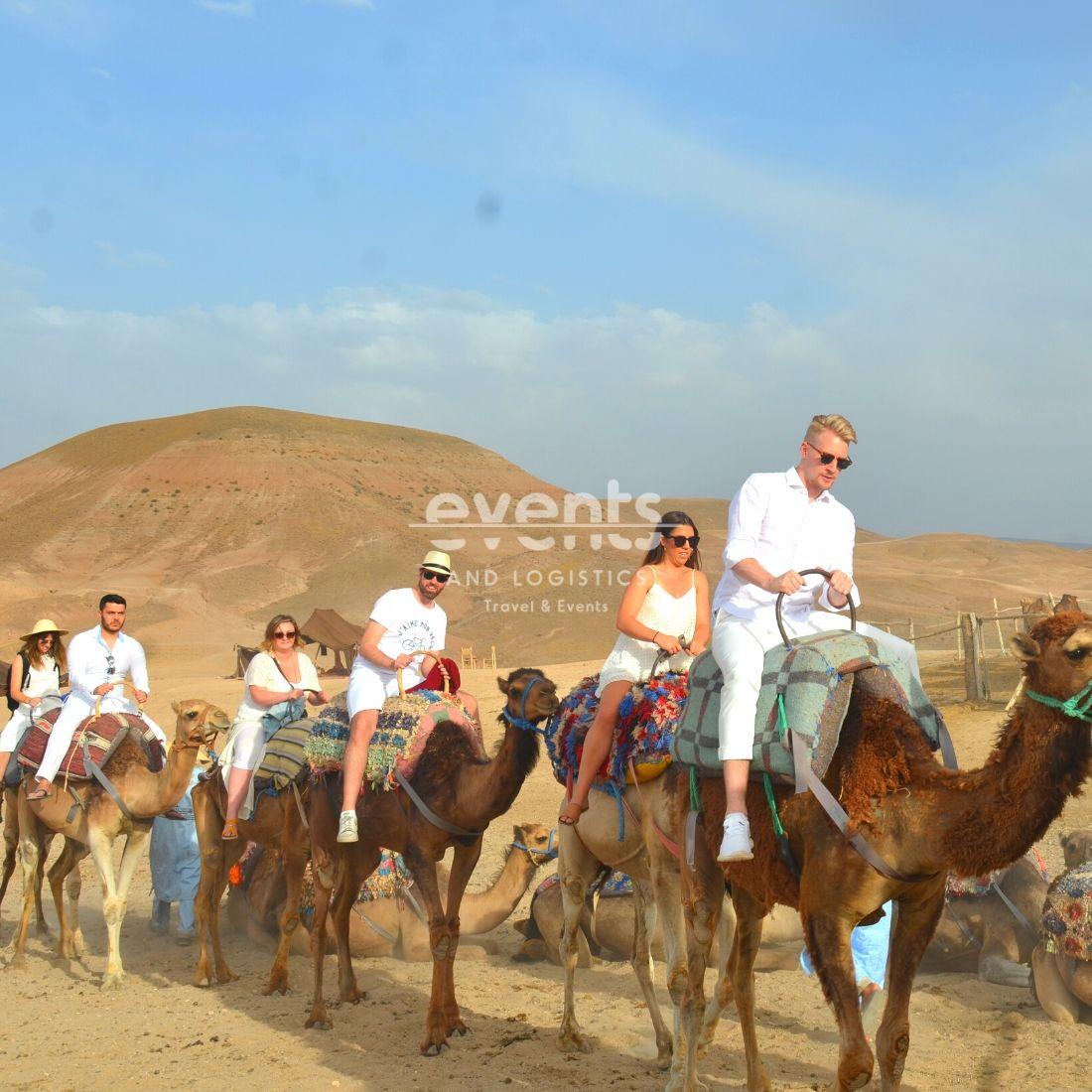 Découvertes à dos de dromadaire Marrakech Palmeraie Agafay désert